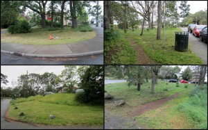 Some of Oaklands' many unmarked green spaces